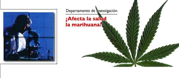 ¿Afecta la salud la marihuana?